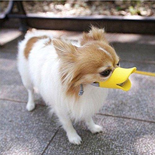 HongYH Entenschnabel-Mundschutz für Hund, Mundschutz, Bissschutz / Maulkorb, bissfest, für kleine Hunde, Gelb - 3