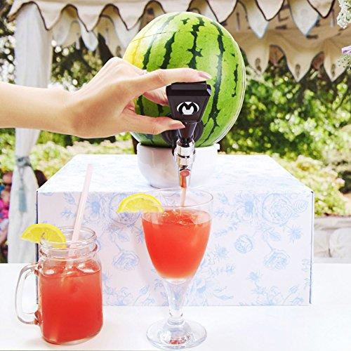 Melonen Zapfhahn verwandelt jede Wassermelone in einen Getränkespender