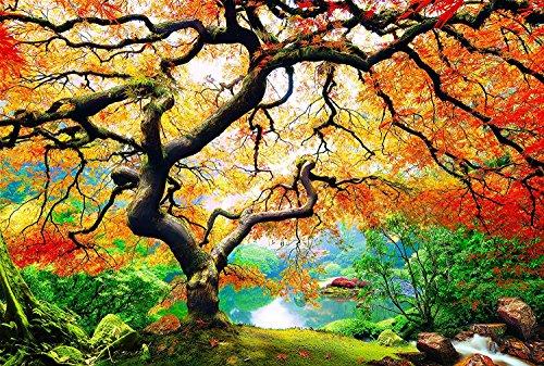 Nachtleuchtendes - Fluoreszierendes Wandbild in XXL - Leinwandbild mit Ahorn-Baum im Herbst